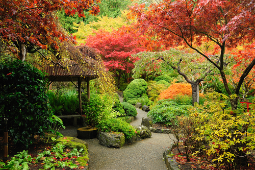 Garden dreams dream interpretation dictionary - Jardines japoneses fotos ...