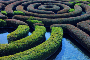 Maze Dream Interpretation