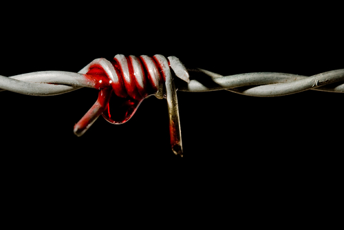 Pain Symbol for dream. Barbed wire.